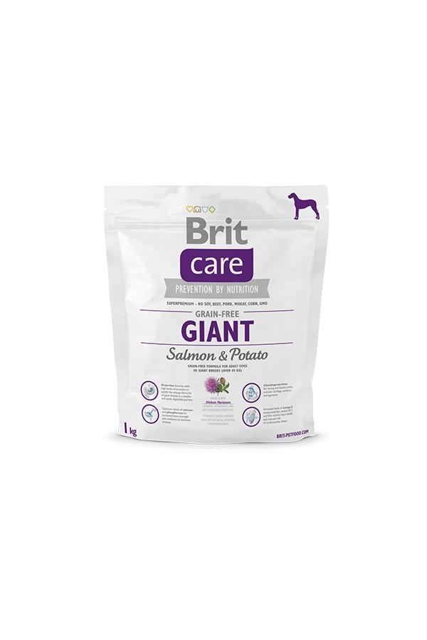Brit Care Grain-Free Bezzbożowa Salmon & Potato Łosoś Giant 1 kg