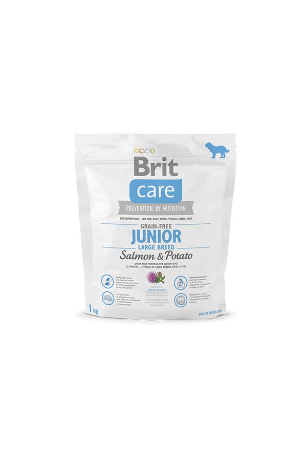 Brit Care Grain-Free Bezzbożowa Salmon & Potato Łosoś Junior Large Breed 1 kg